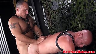 Leather fetish bear barebacks chubby mature